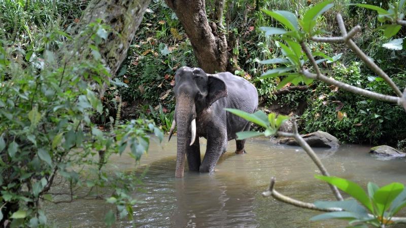 08d47-20130201_srilanka789