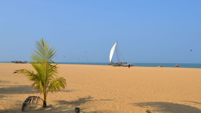 98c05-20130201_srilanka1098