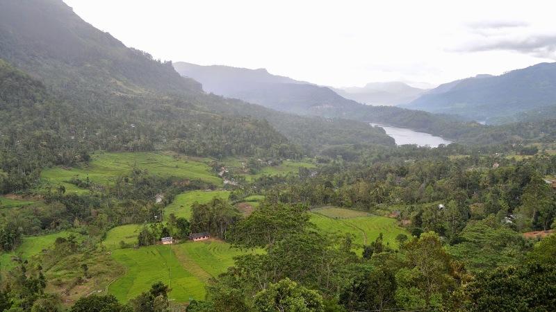 9d0a3-20130201_srilanka543