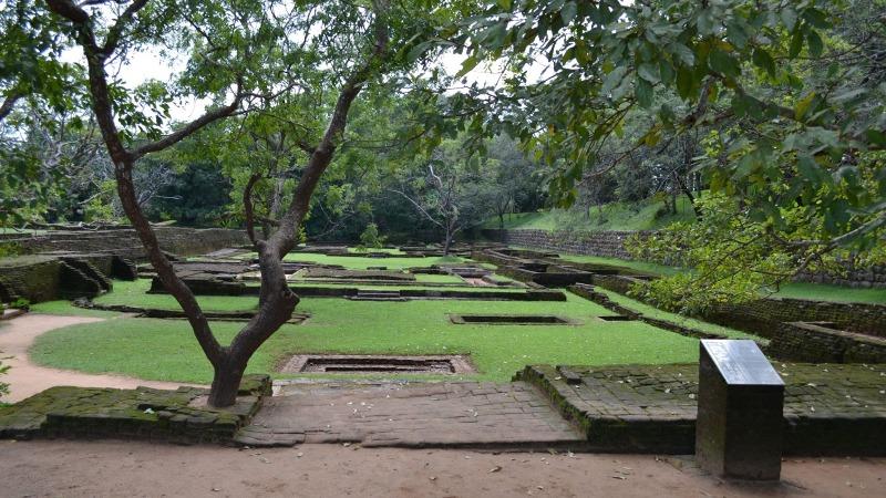 c0dd6-20130201_srilanka816