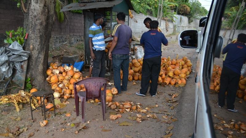 e3aca-20130201_srilanka5