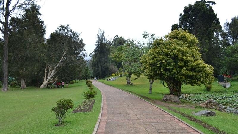 ebd77-20130201_srilanka571