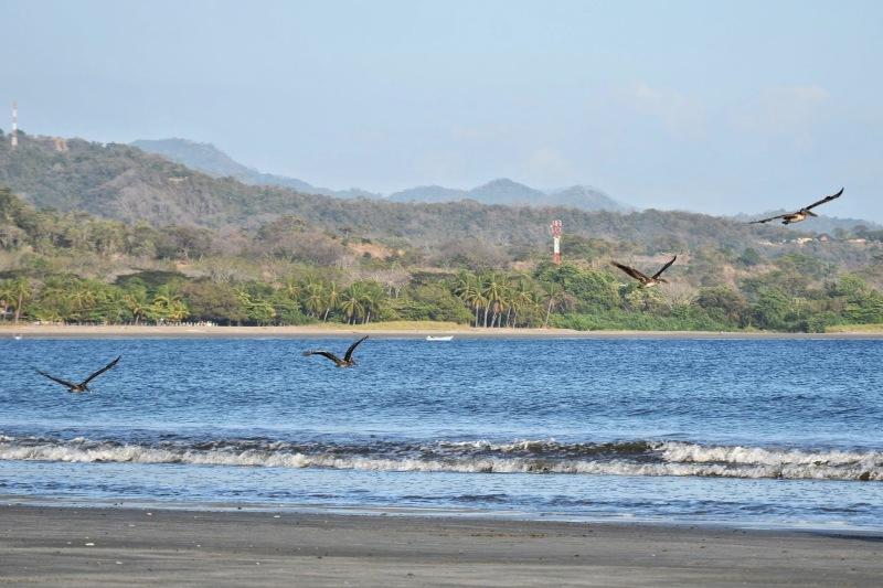 54f1f-2014_kostarika210