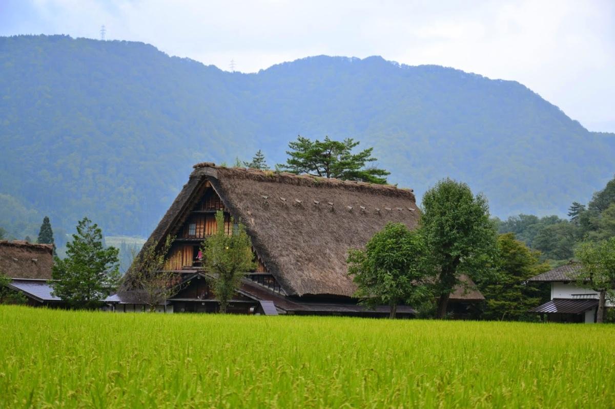 JAPONSKA: Načrt potovanja (14 dni)