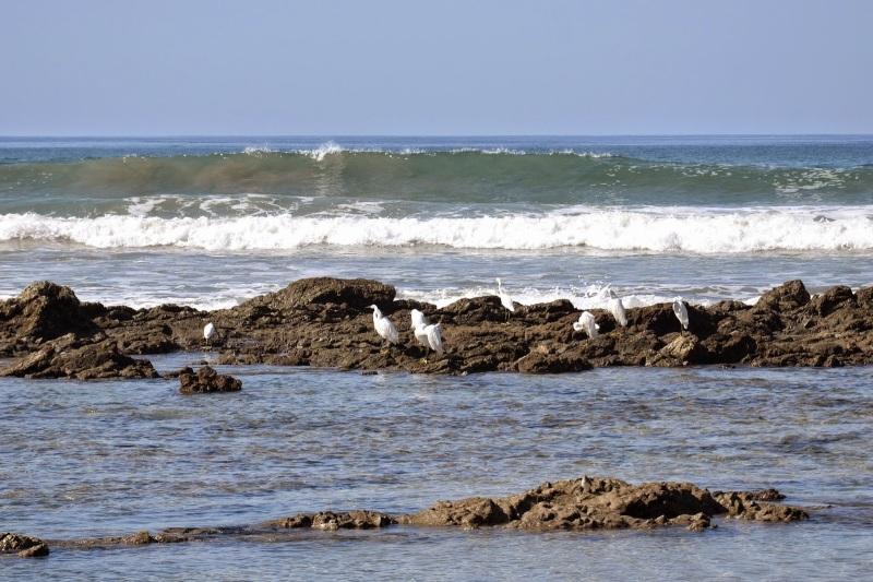 05daf-2014_kostarika2b1183