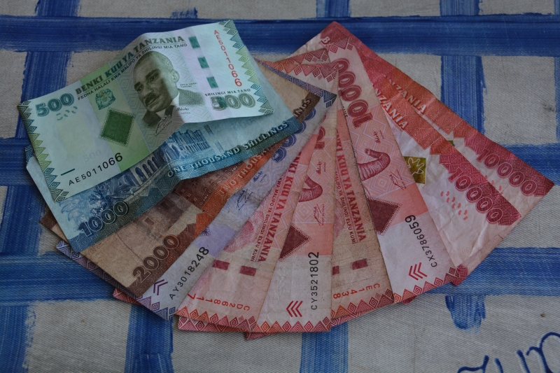 Tanzanijski šiling je uradna valuta na Zanzibarju.