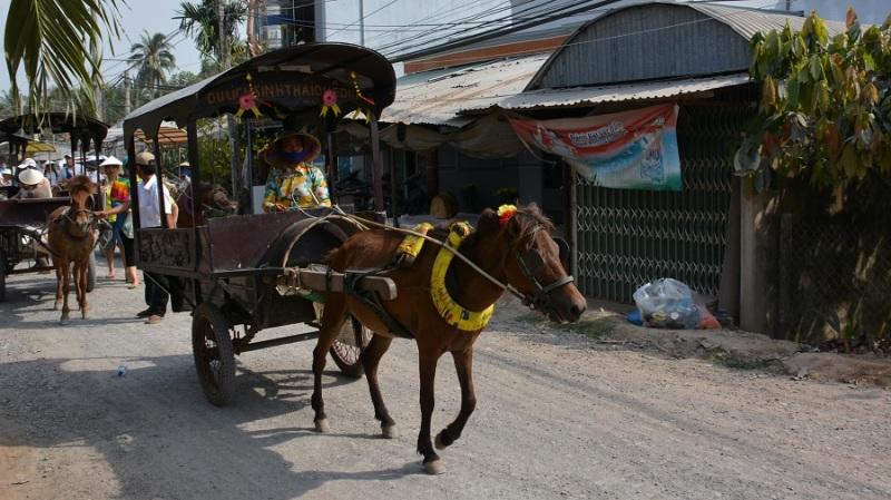 Vietnam in Kambodza 2016 (1793)