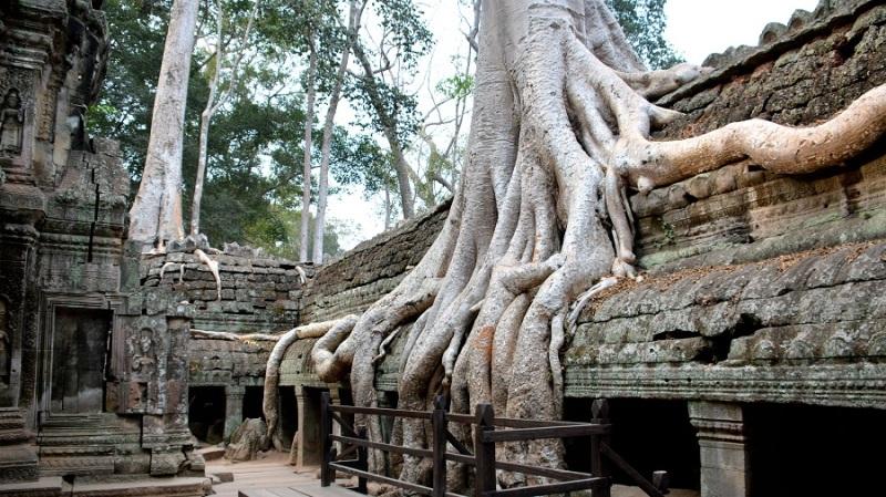 Vietnam in Kambodza 2016 (883)