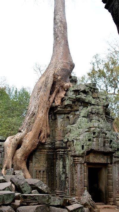 Vietnam in Kambodza 2016 (963)