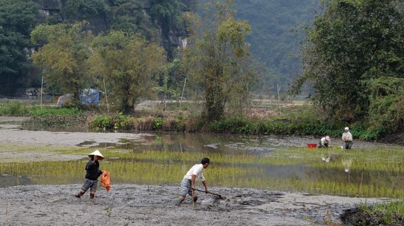 Vietnam in Kambodza 2016 (3812)