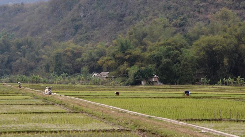 Vietnam in Kambodza 2016 (4824)