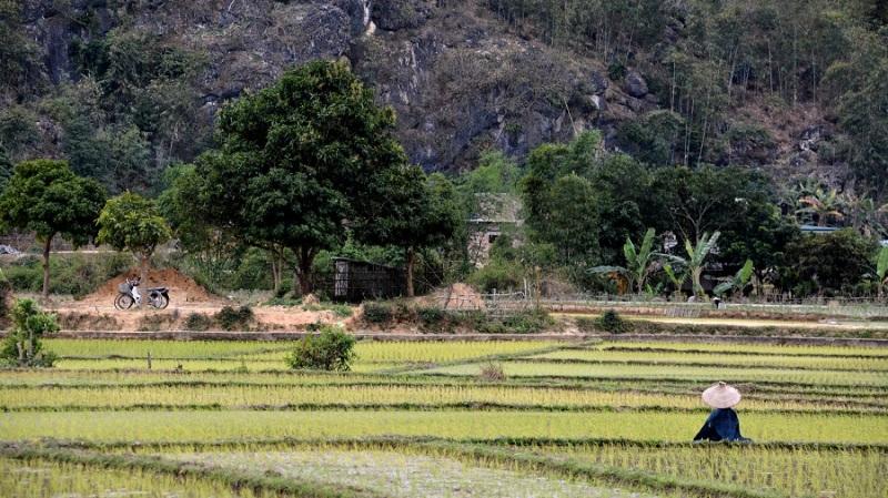 Vietnam in Kambodza 2016 (4981)