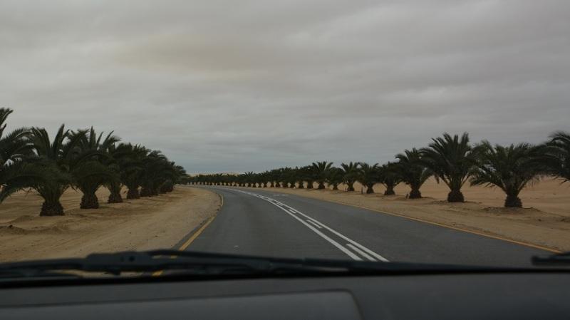 namibija-in-bocvana-2016-1004