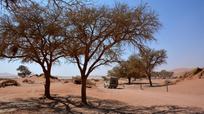 namibija-in-bocvana-2016-275