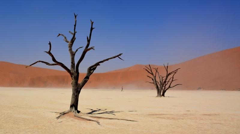 namibija-in-bocvana-2016-301