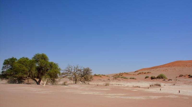 namibija-in-bocvana-2016-343