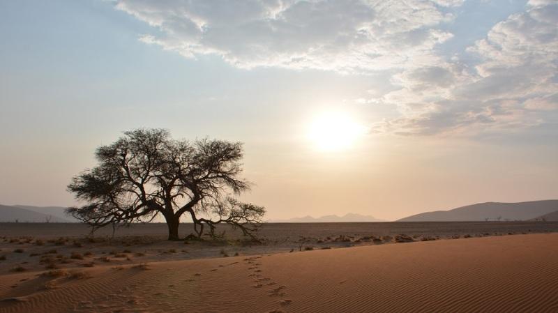 namibija-in-bocvana-2016-617