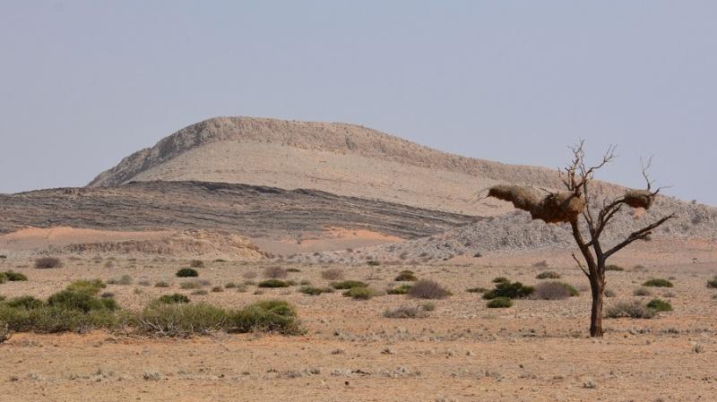 namibija-in-bocvana-2016-744