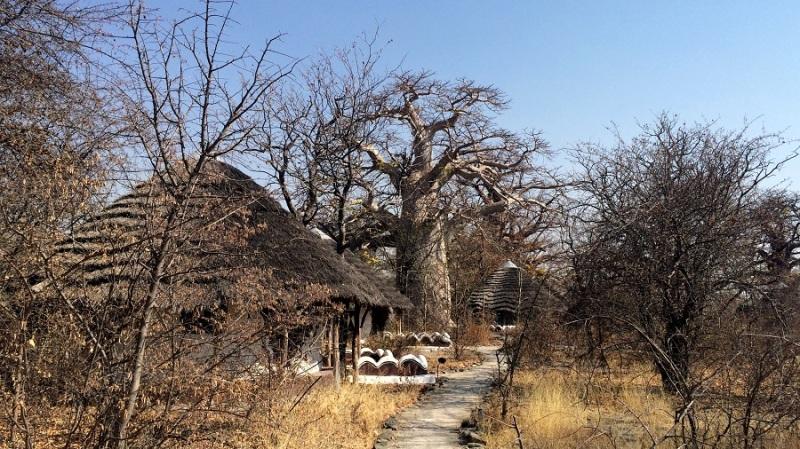 iphone_namibija-in-bocvana-2016-442