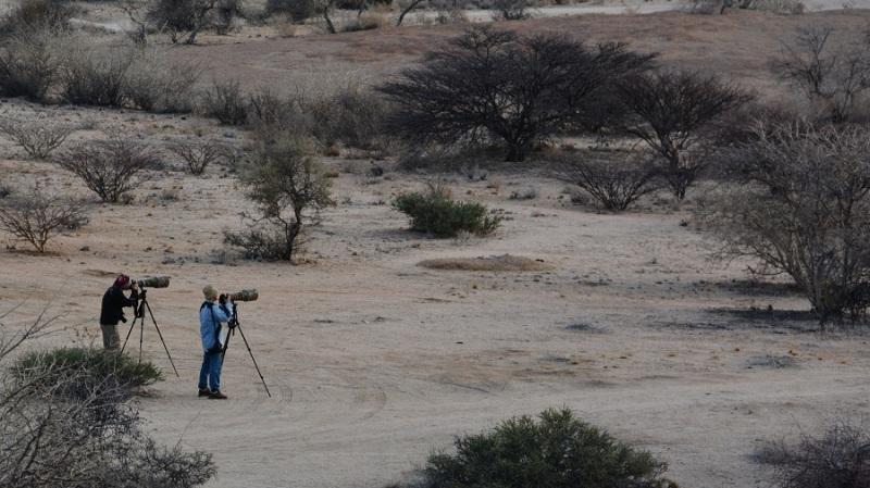 namibija-in-bocvana-2016-1462