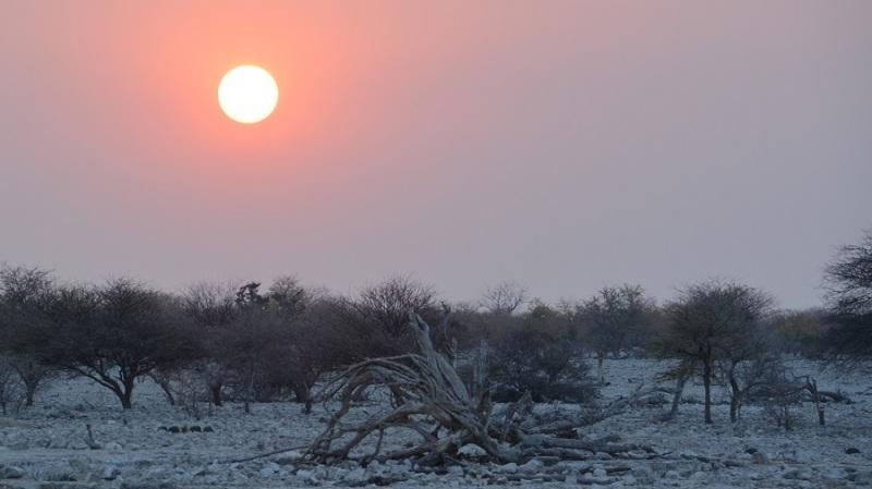 namibija-in-bocvana-2016-1783
