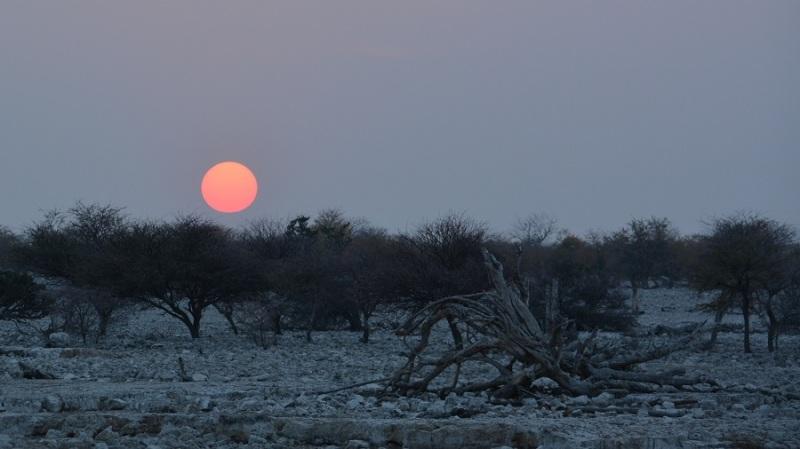 namibija-in-bocvana-2016-1793