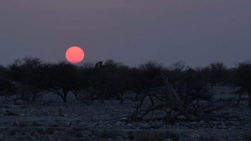 namibija-in-bocvana-2016-1795