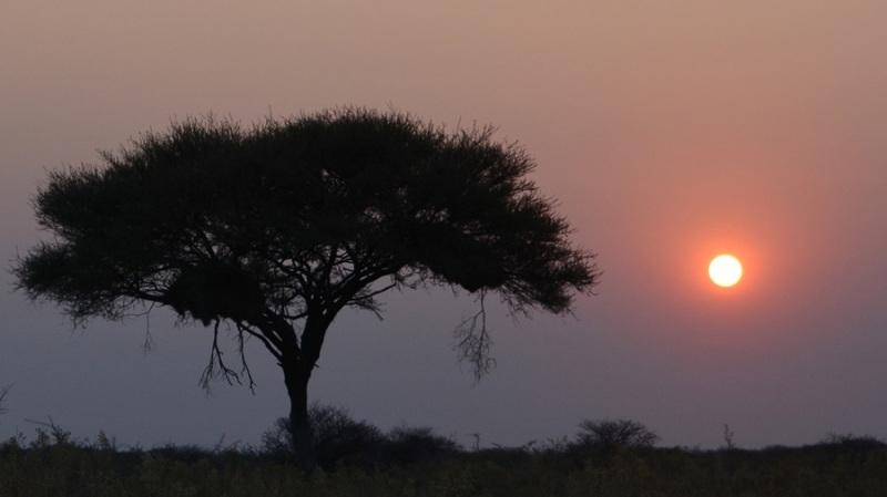 namibija-in-bocvana-2016-1808