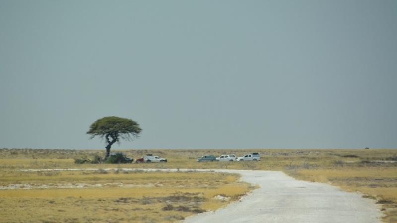 namibija-in-bocvana-2016-2072