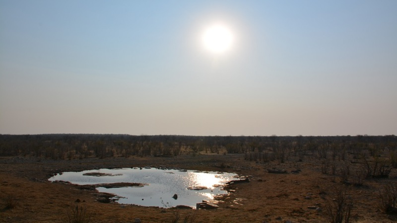 namibija-in-bocvana-2016-2225
