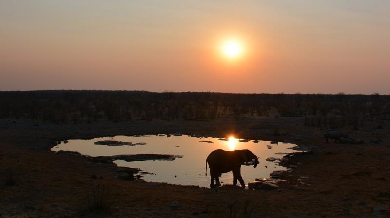 namibija-in-bocvana-2016-2287