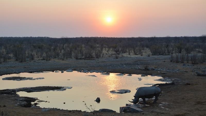 namibija-in-bocvana-2016-2298