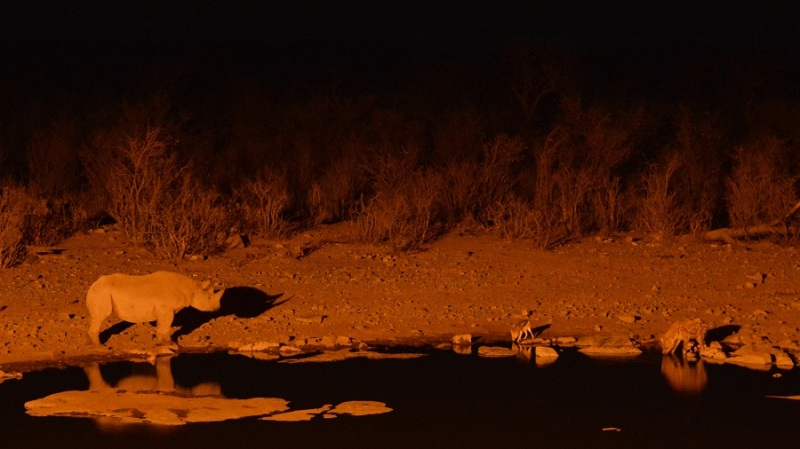 namibija-in-bocvana-2016-2334
