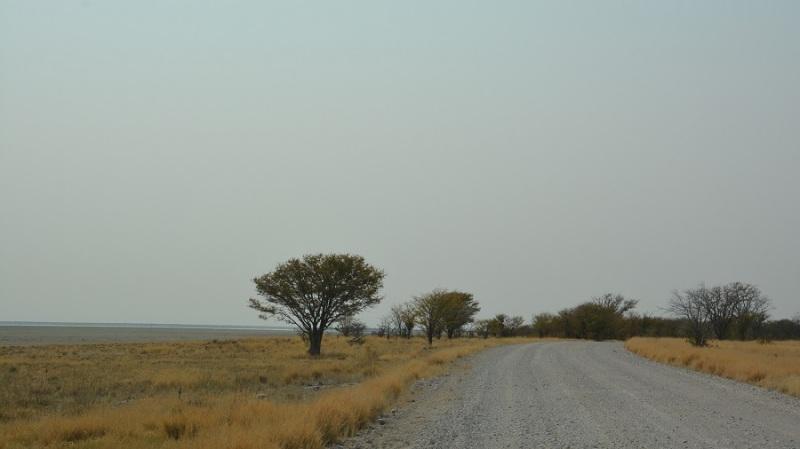 namibija-in-bocvana-2016-2378