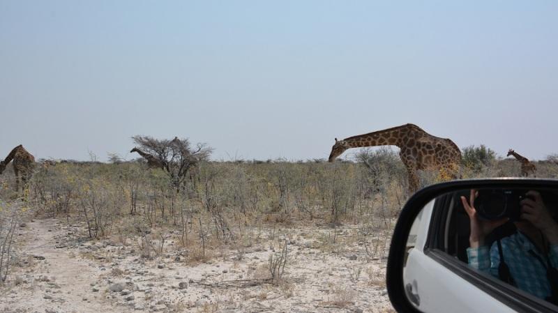 namibija-in-bocvana-2016-2545