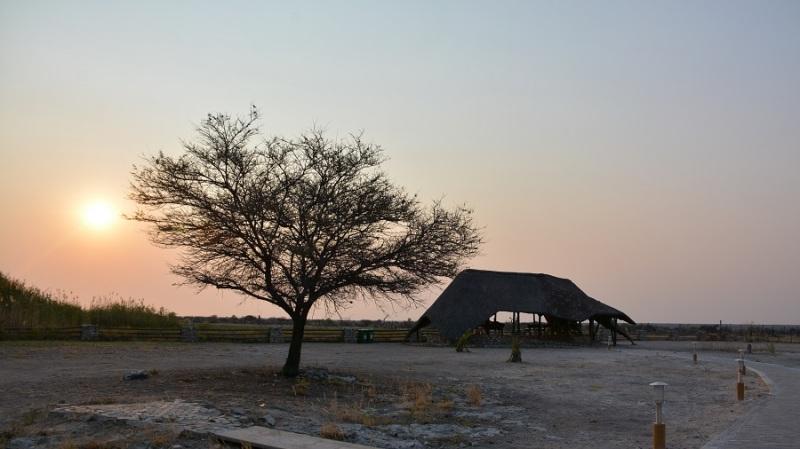 namibija-in-bocvana-2016-2650
