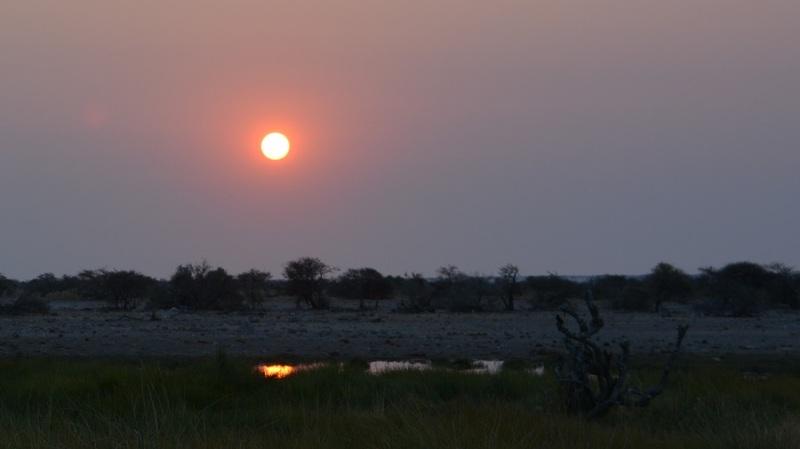 namibija-in-bocvana-2016-2656