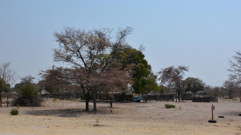 namibija-in-bocvana-2016-2673