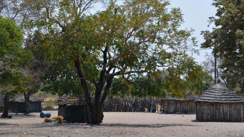 namibija-in-bocvana-2016-2689