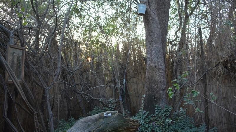 namibija-in-bocvana-2016-2711