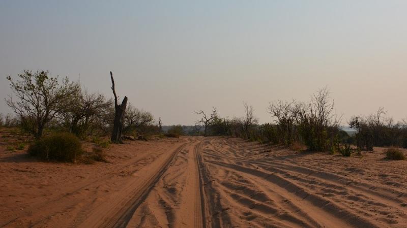 namibija-in-bocvana-2016-2773