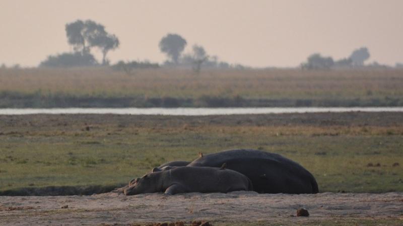 namibija-in-bocvana-2016-2868
