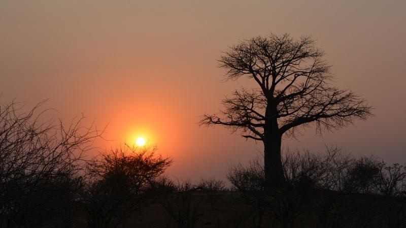 namibija-in-bocvana-2016-2898