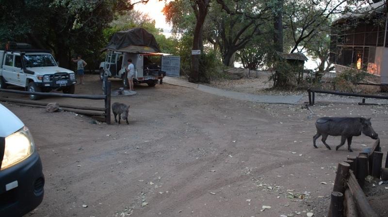 namibija-in-bocvana-2016-2904
