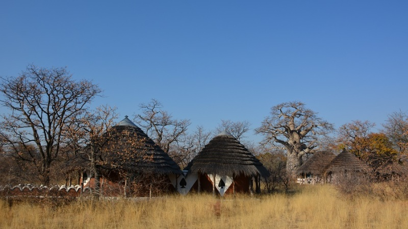 namibija-in-bocvana-2016-3182
