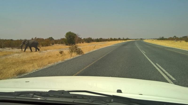 nokia_namibija-in-bocvana-2016-337