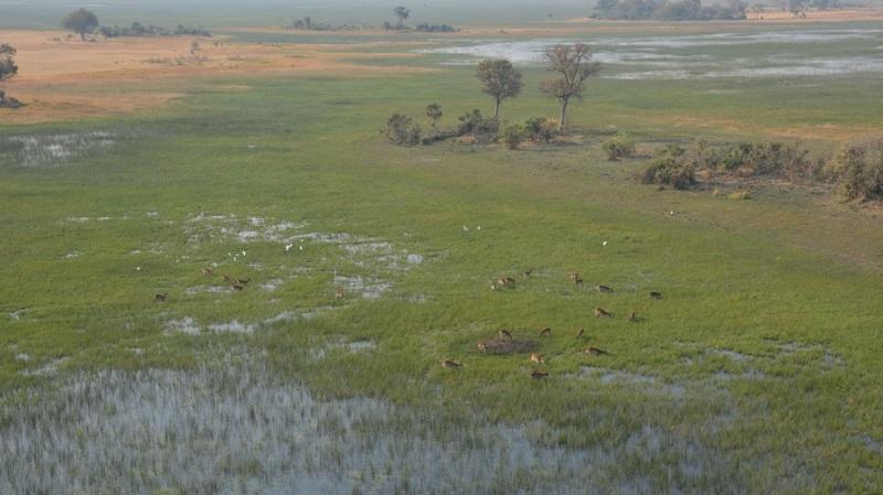 namibija-in-bocvana-2016-3537