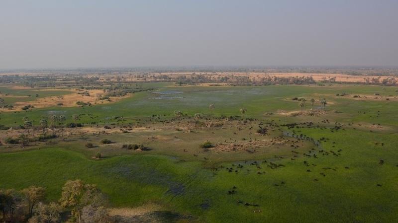 namibija-in-bocvana-2016-3585