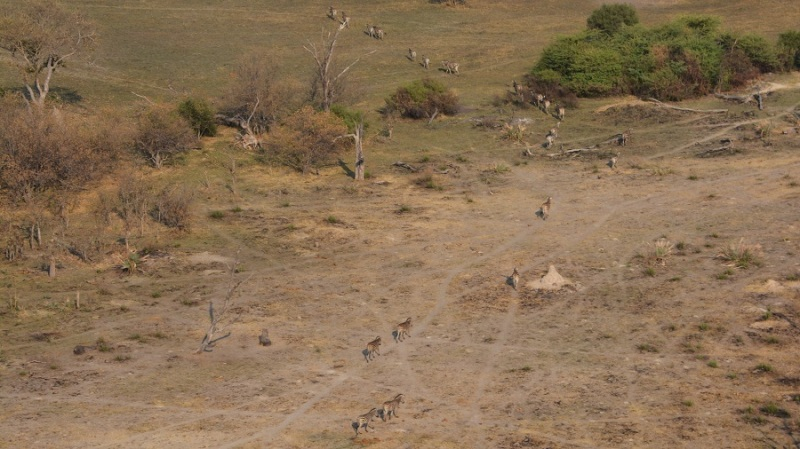 namibija-in-bocvana-2016-3587