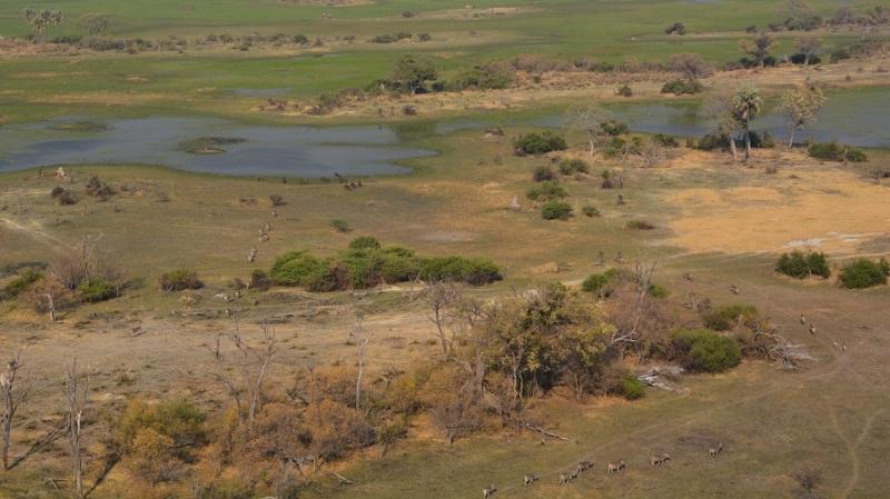 namibija-in-bocvana-2016-3590